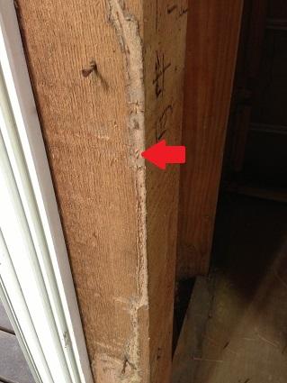 8 藏家の1階新事務所改装工事解体 白蟻