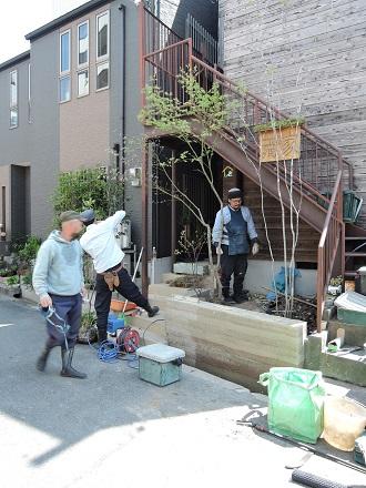 24 藏家事務所 植木植え込み