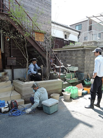 29 藏家事務所 植木植え込み