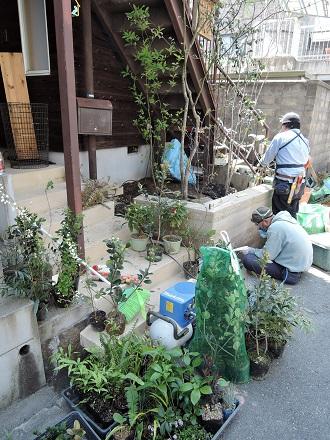 30 藏家事務所 植木植え込み